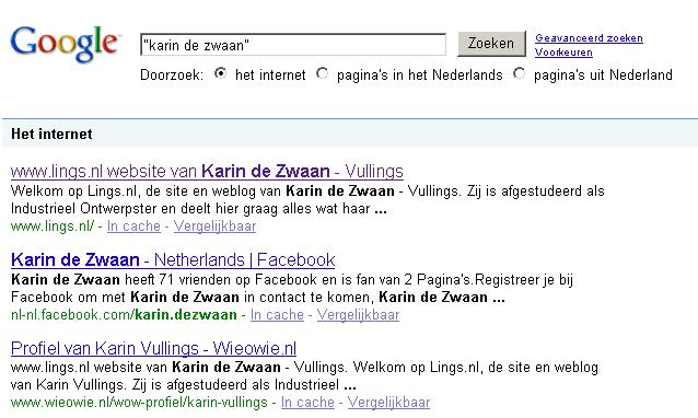 google-karin-de-zwaan-2