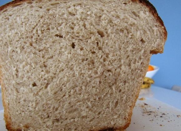 honingbrood
